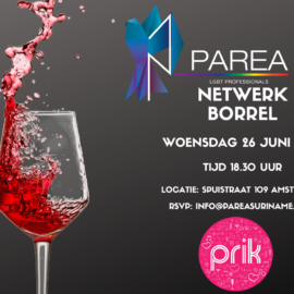 Network Drinks @Cafe Prik Amsterdam